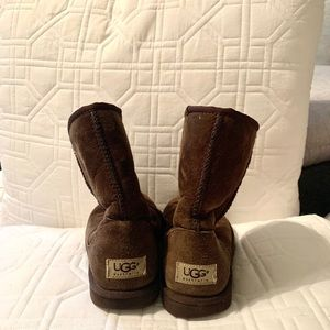 Ugg classic chocolate short boot sheepskin